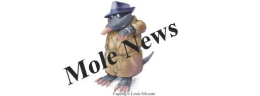 MoleNewsPromo