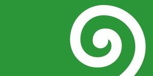 flag29
